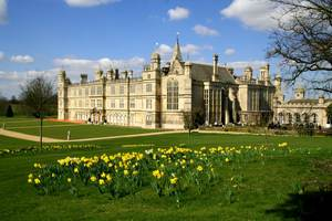 Beautiful Burghley house with a carpet of daffodils
